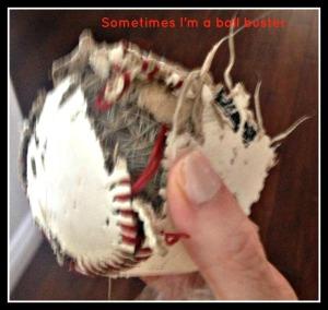 baseballbuster